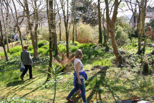 walking-at-Derrynane